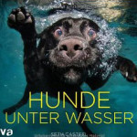 hunde-unter-wasser